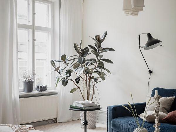 Appartement scandinave avec moulures et boiseries