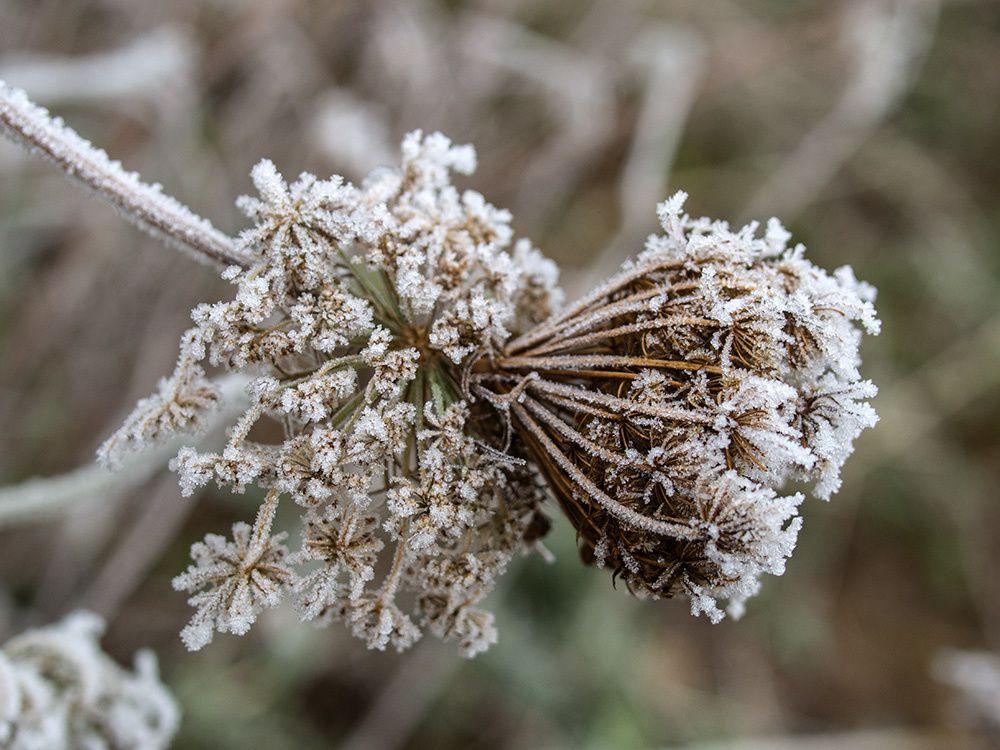 L'hiver à la Croix Longue