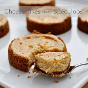 Petits cheesecakes au Spéculoos