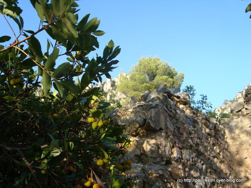 Au nord-est de La Roquebrussanne (Var), le massif des Orris domine le paysage.