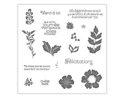 [Stampin'Up!®] mini collection Tout est plus Rose