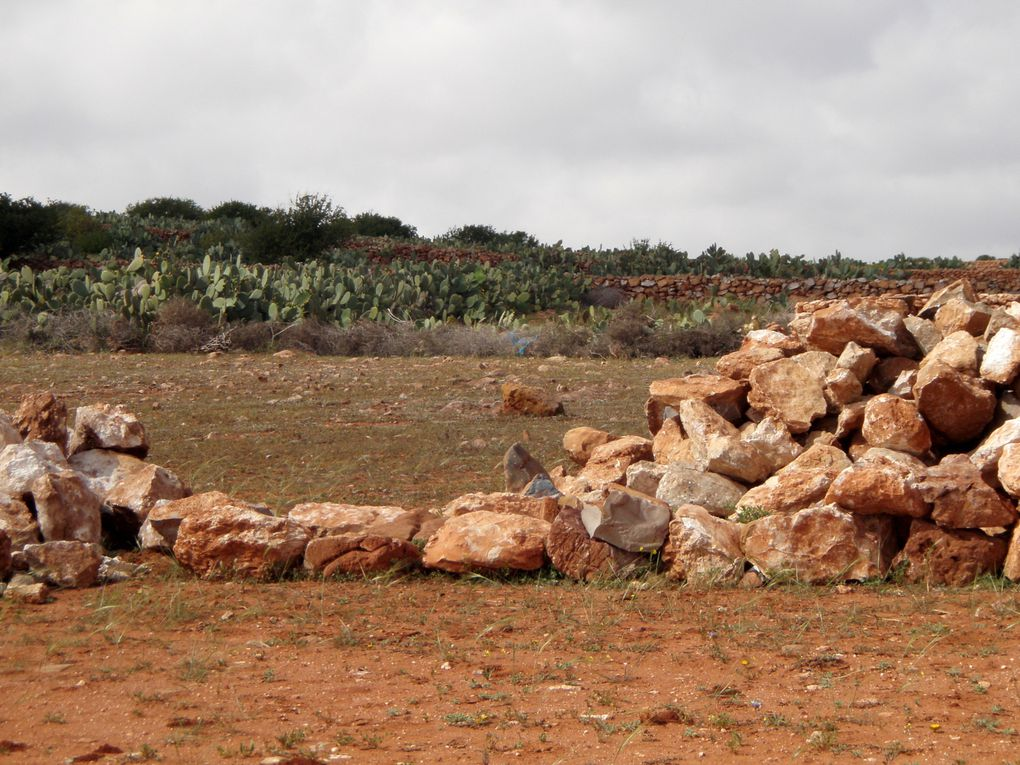 Murs de soutien, de récup de pierre, récents ou plus anciens