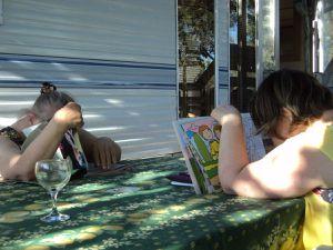 Chacun ses activités les fins d'après midi !! pour ma part, toujours le nez dans les livres !
