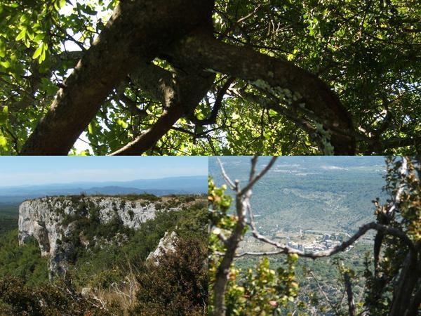 Un petit tour dans la France que j'aime .