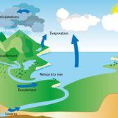 le cycle de l'eau ... - L'Eveil