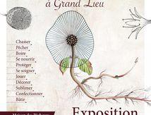 Histoire de Plantes d'antan…