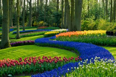 Several Excellent Landscape Concepts with Flowers for the Entrance