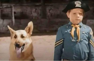 Lee Aaker, qui a interprété le jeune Rusty dans « Rintintin », est décédé en indigent