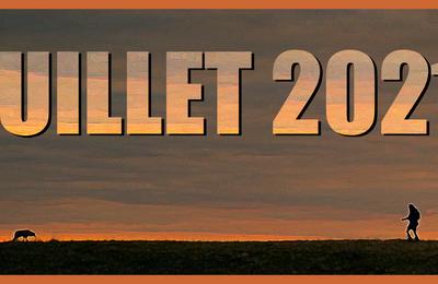 [Films vus en] Juillet 2021 (vidéo)
