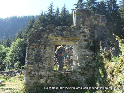 Ma randonnée du mercredi 5 Août : Belvédère de Château-Julien par Valchevrière