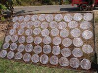 Galettes pour rouleaux de printemps