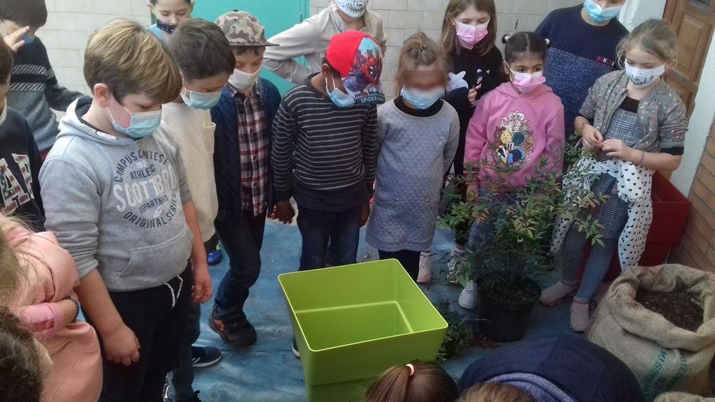 Nos jeunes jardiniers au travail