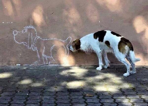 Mondo cane- Il nonno di Dudù