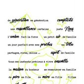 FDSTT5007 FDSTT5007 TAMPONS TRANSPARENTS PHRASES FAMILLE FEE DU SCRAP
