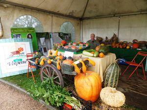 Le stand des Jardins Volpette, les bénévoles en compagnie de Mr Gourgaud