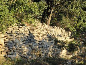 Le long du chemin communal de la Carredone
