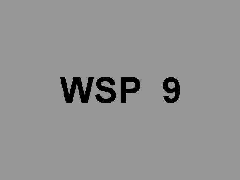 WSP 9 , vedette de la police fluviale allemande sur le Rhin au passage de Cologne (Allemagne) le 31 mai 2019
