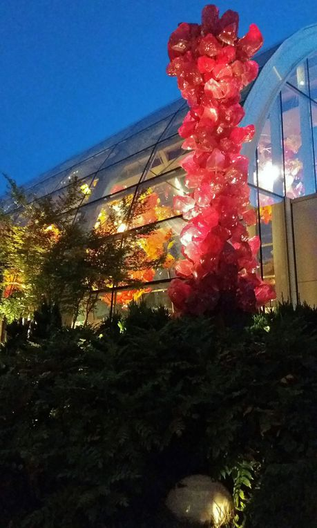 Diaporama : Chihuly Garden and Glass, le jardin la nuit