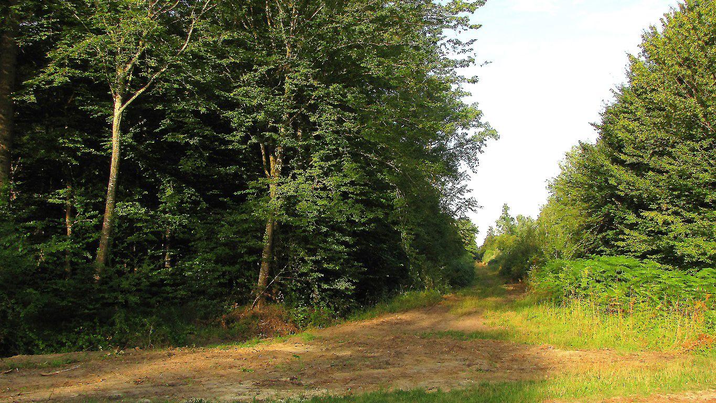 le carrefour d'Orbay