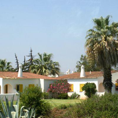 La maison traditionnelle : plan, matériaux, tour de main, coût
