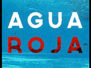 agua roja, un trio parisien partagé par les influences 70's, pop et surf