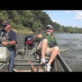 Flying Silver Carp on Wabash River in Indiana
