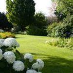 Un jardin sous mes mots de Francis Etienne Sicard