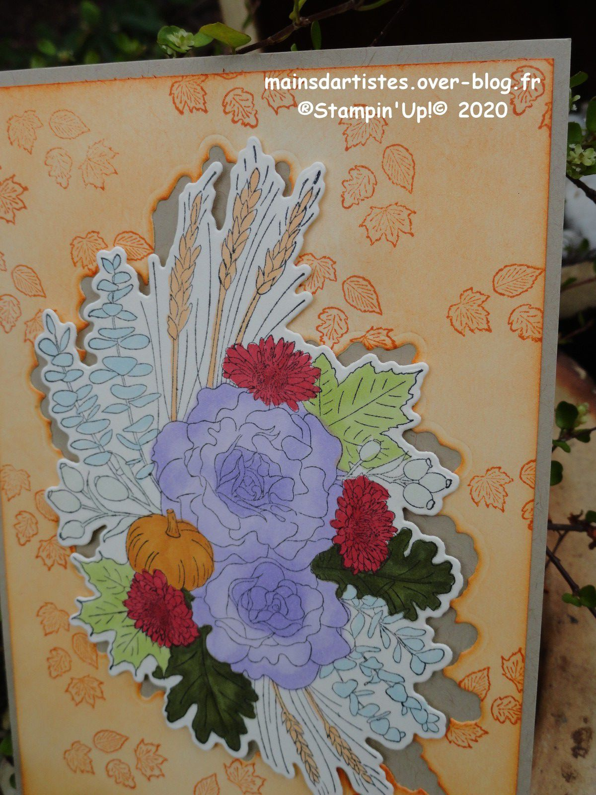 SALUTATIONS D'AUTOMNE,STAMPIN'UP!.