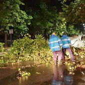 Avertizare METEO, în vigoare: Cod GALBEN de furtuni, în toată ţara/ Oameni răniţi, peste 100 de copaci căzuţi, şi zeci de acoperişuri doborâte de vijelii/ Situaţia în Bucureşti