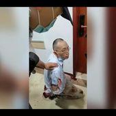 Université. Un jeune enseignant shanghaïen tue le secrétaire du Parti de sa faculté