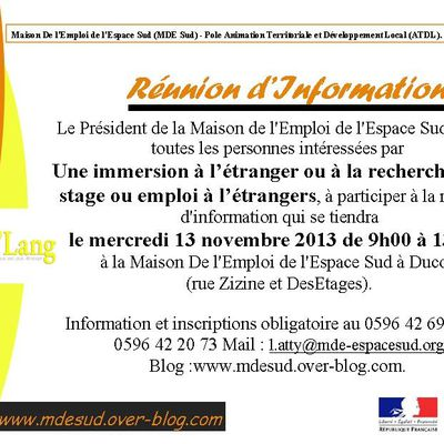 Réunion d'Information ATDL: Immersion à l'étranger
