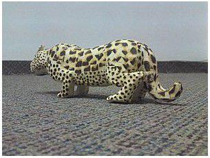 Mi primer encuentro con un Yaguareté (Jaguar) Parte 1