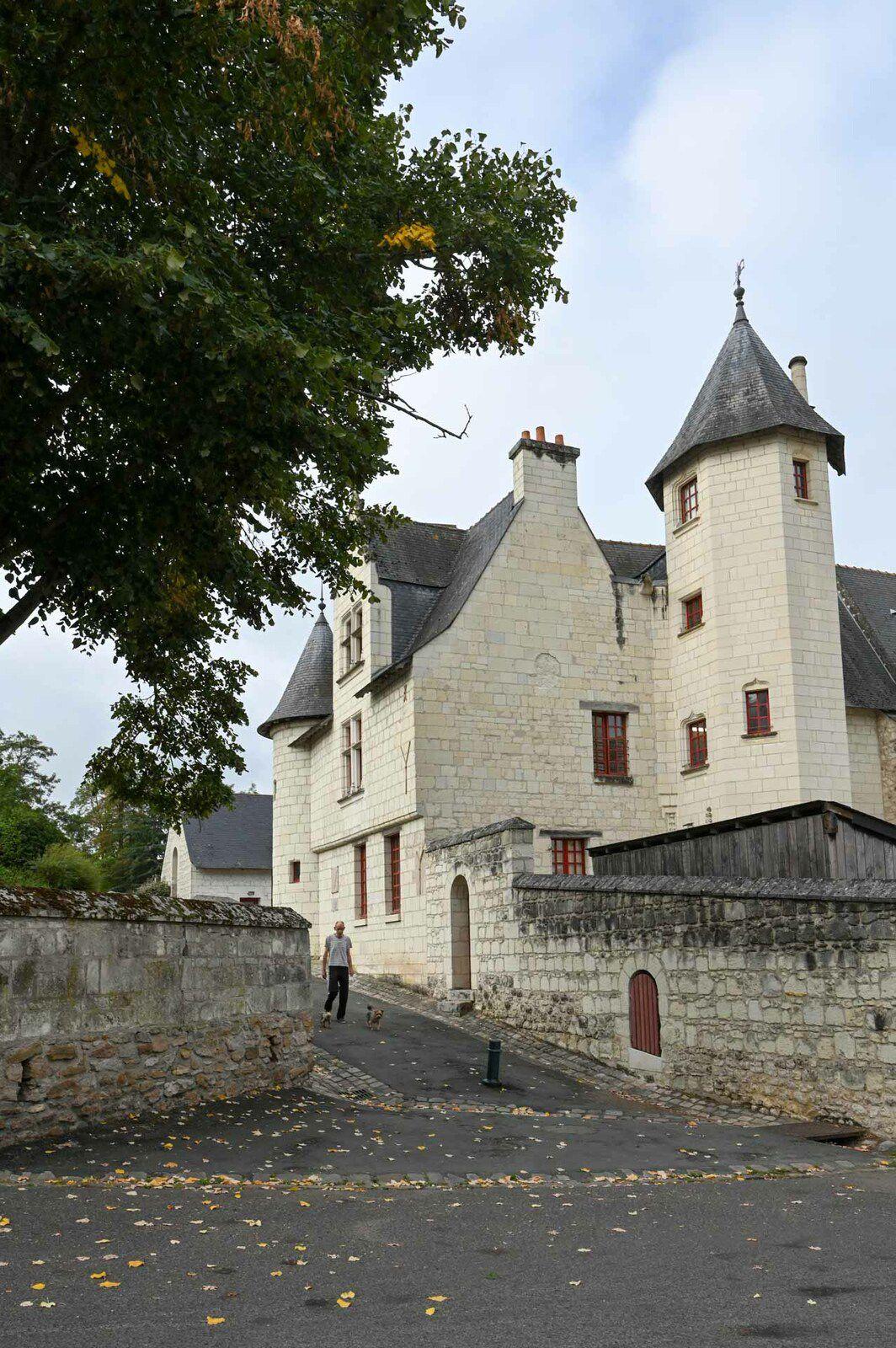 SAUMUR : Le château et ses alentours
