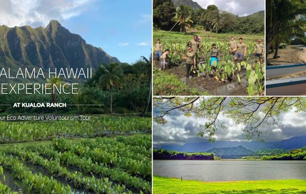 USA Malama Hawai experience est à l'heure de l'écotourisme