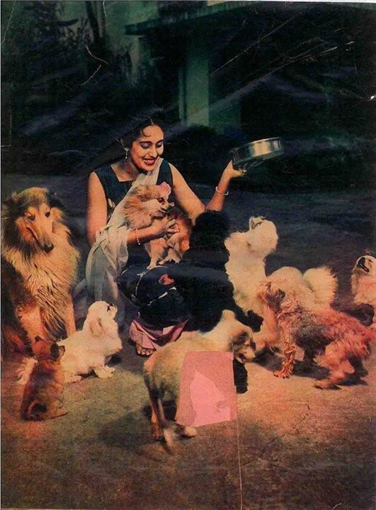 Nutan and her animals