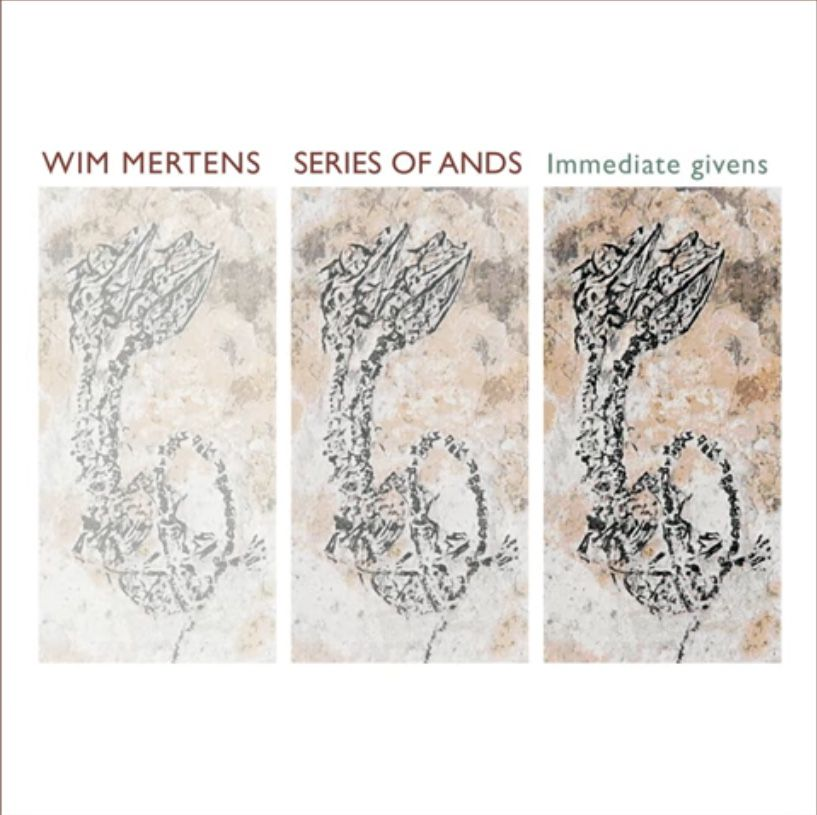 Wim Mertens - Series of Ands / Immediate Givens
