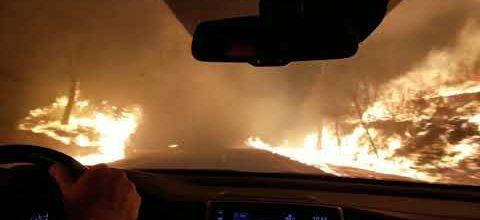 Californie : fuir l'incendie
