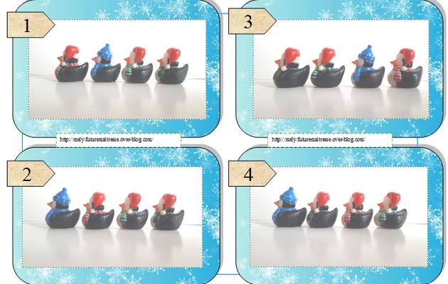 Les canards en folie N°4 sur le thème de l'hiver