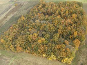 L'automne est là et une 1/2 heure dans un air rafraissisant (12 novembre 2012)