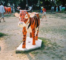 bonne année du tigre