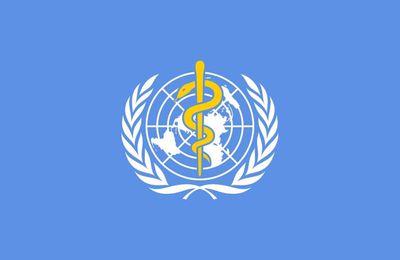 Covid-19. L'OMS encourage la recherche sur les médecines naturelles (AFP)