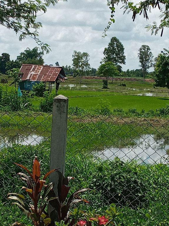 photos autour de la maison , saison des pluies