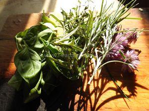 Daurade au Four sur Lit de Légumes Rôtis