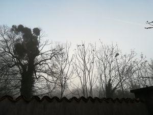 Mirebeau au Couchant : ciel du Dimanche 29 décembre à 17H 40 - Au levant : ciel du Lundi 30 décembre à 8H36.