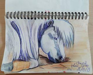 dessins: au stylo au crayon aquarelle