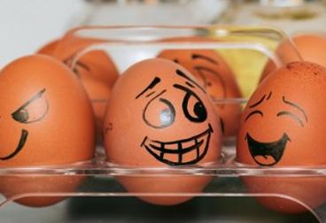 Devez-vous avoir peur de manger des œufs chaque jour ?