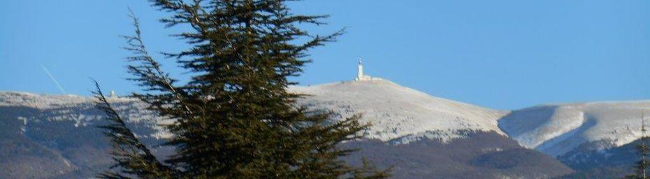 """Un """"petit"""" Ventoux pour la St Sylvestre : 67km - 1448m"""