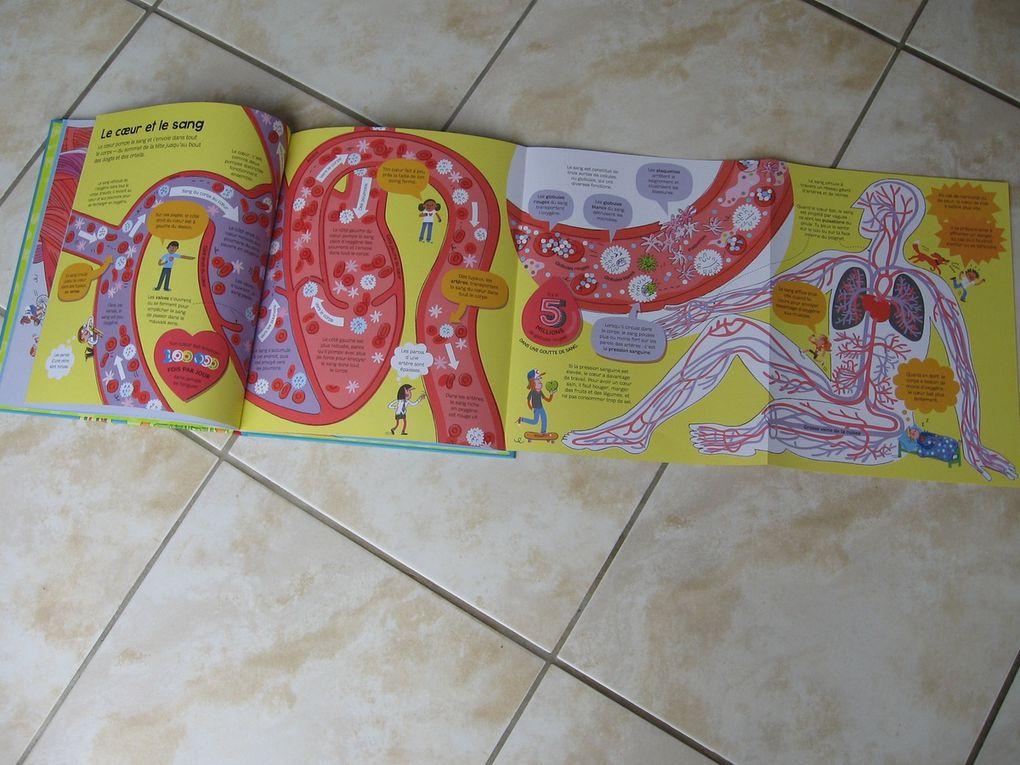 mon livre du corps humain Éditions Usborne