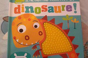 Il ne faut pas toucher un dinosaure - 1 2 3 soleil