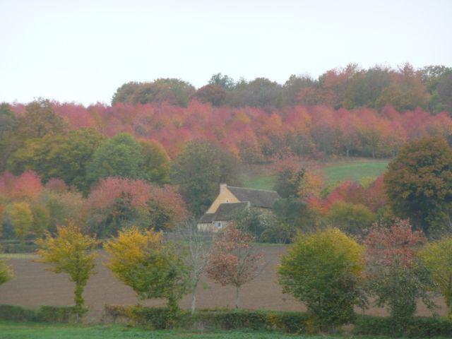 Quelques clichés de Mâle, entre automne et hiver... (transmis par un photographe amateur)